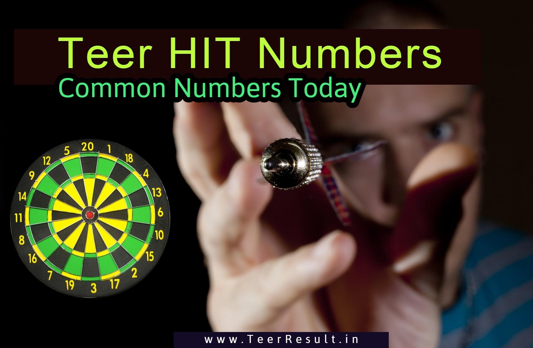 teer hit numbers